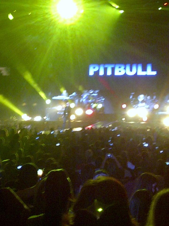 PITBULL rocks Madison Square Garden | NonJersey Girl